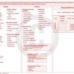 Field Level Risk Assessment Sample